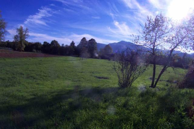 Terreno edificabile, BARGA (LU)