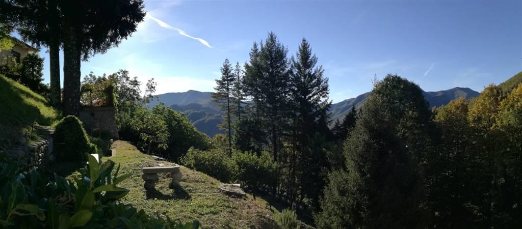 Casa singola, FABBRICHE DI VERGEMOLI (LU)