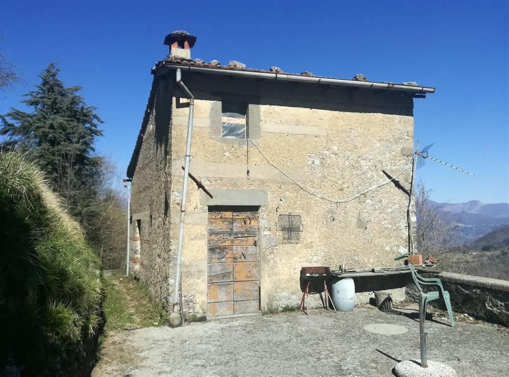 Rustico casale, GALLICANO (LU)