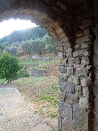 L'arco della cantina - The arc of the cellar